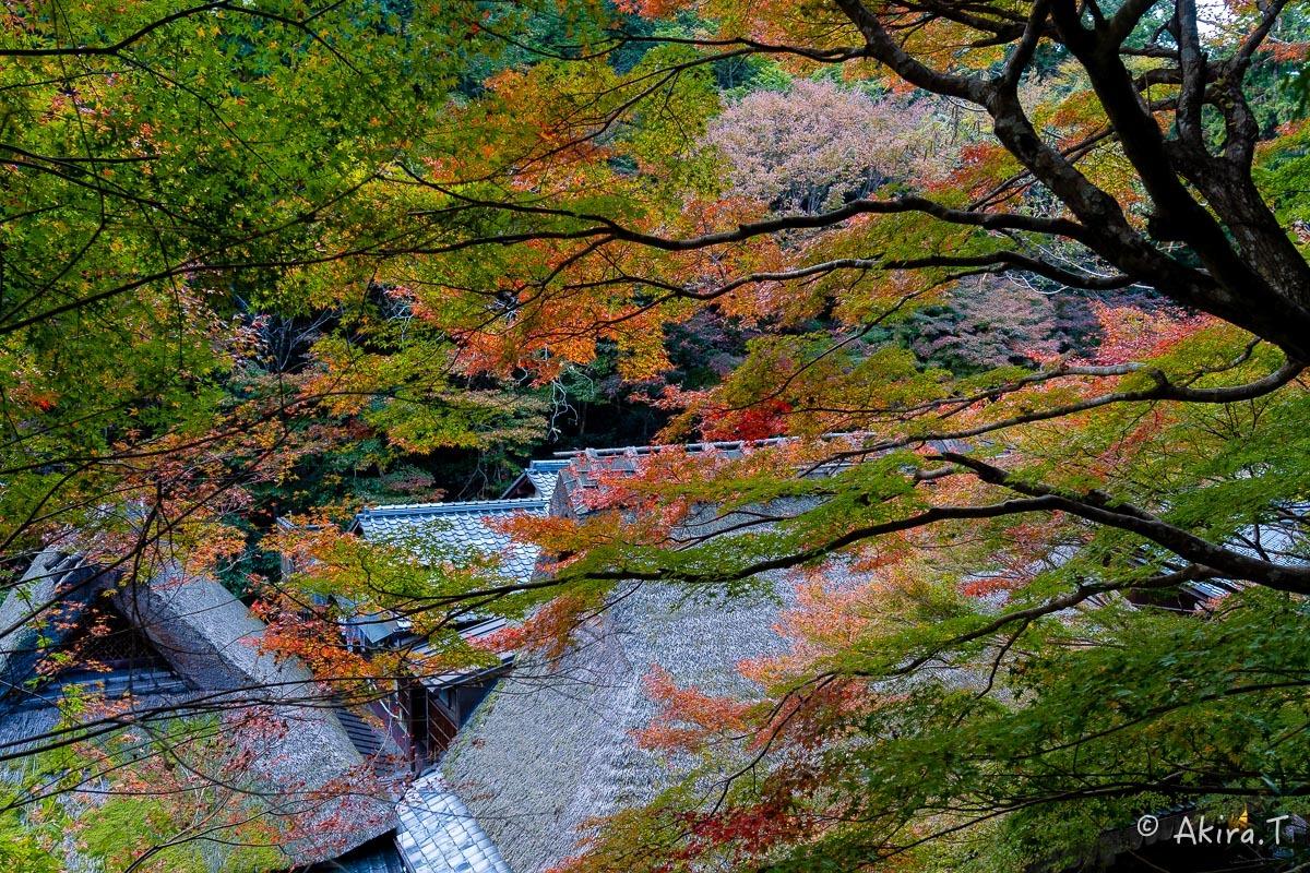 京都の紅葉 2018 〜14〜_f0152550_17593420.jpg