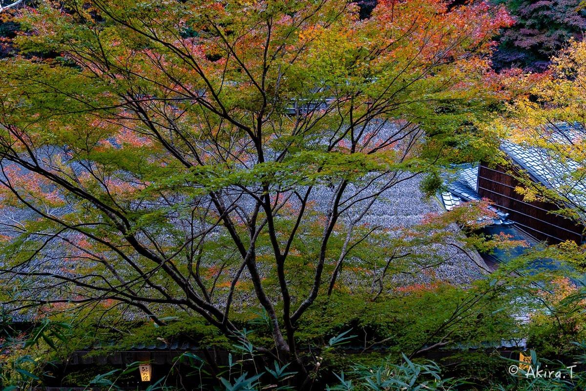 京都の紅葉 2018 〜14〜_f0152550_17594009.jpg