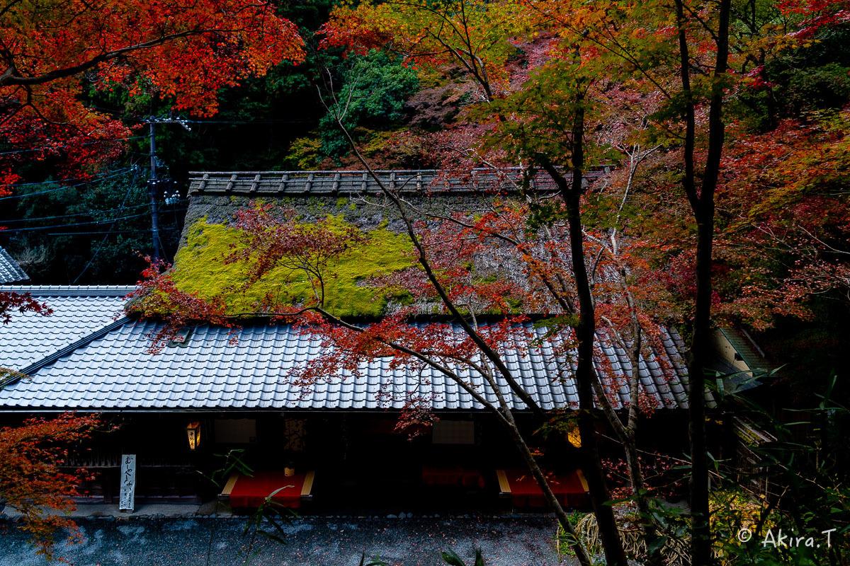京都の紅葉 2018 〜14〜_f0152550_17594927.jpg