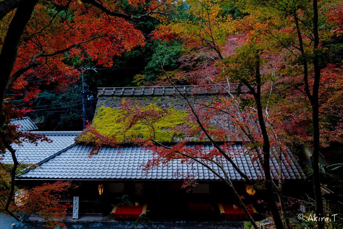 京都の紅葉 2018 〜14〜_f0152550_17595618.jpg