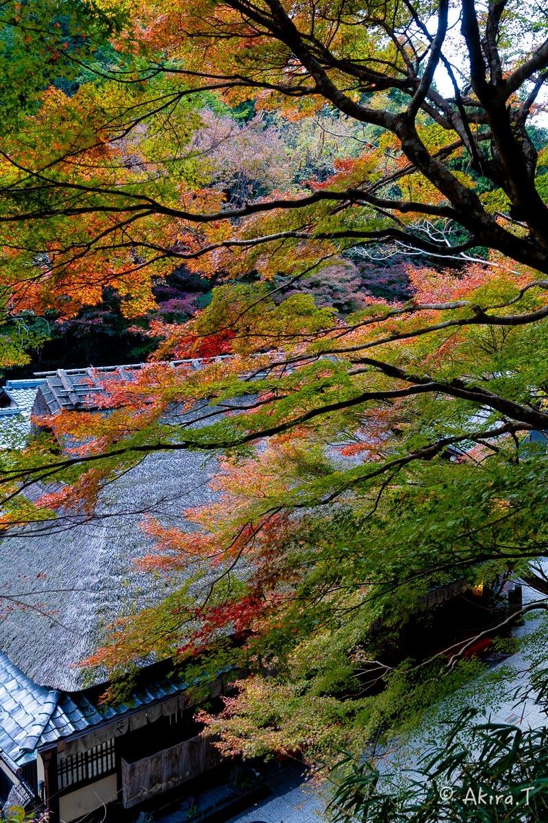 京都の紅葉 2018 〜14〜_f0152550_18003223.jpg