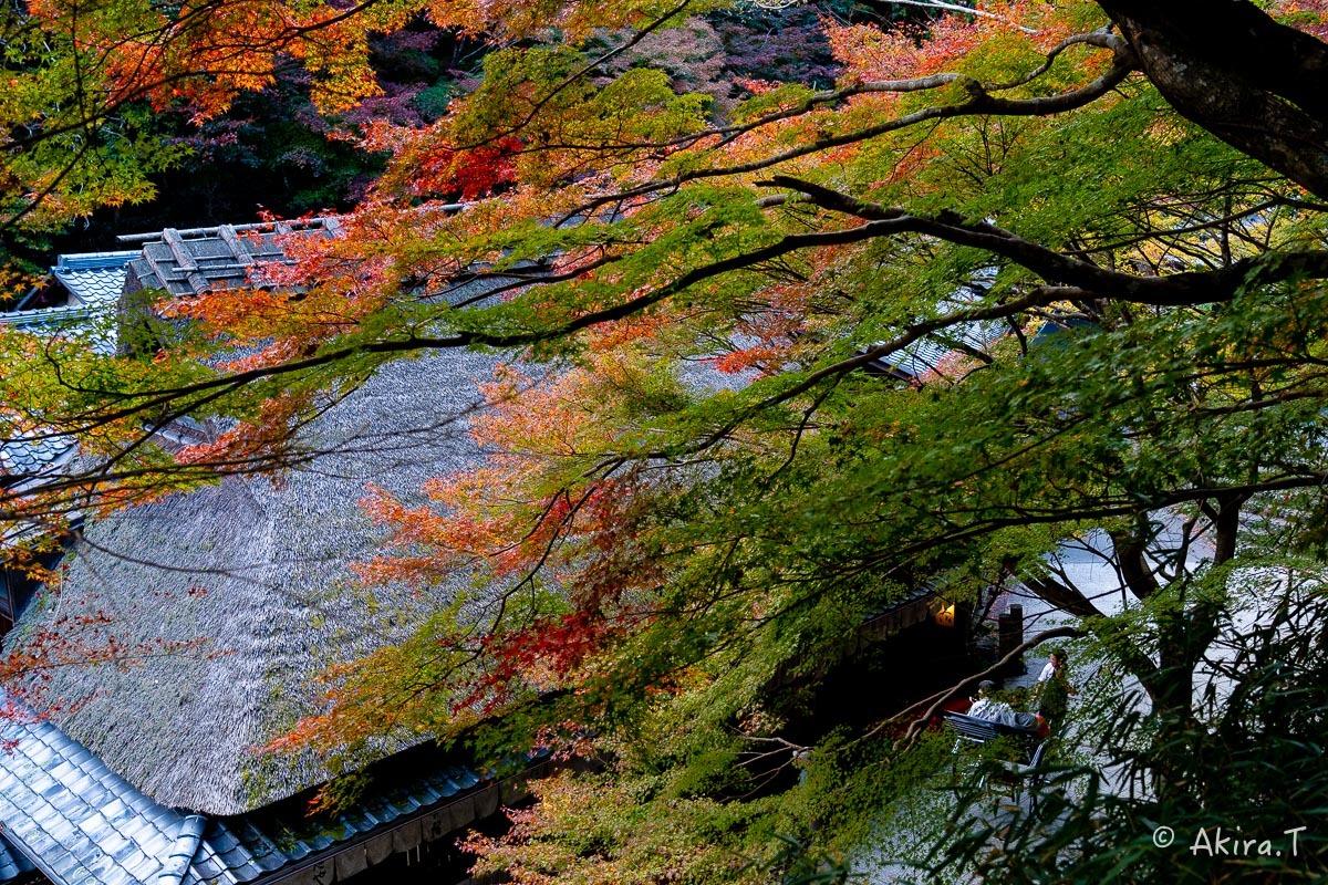 京都の紅葉 2018 〜14〜_f0152550_18003885.jpg