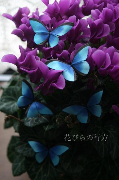 c0326668_11403498.jpg