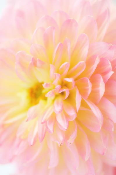【フォトセミナー】JUNKO先生のカメラ講座 6月22日〜_f0215487_15134096.jpg