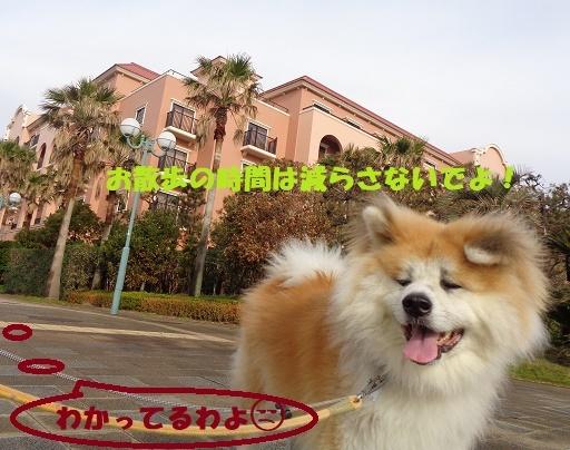 f0121712_00013527.jpg
