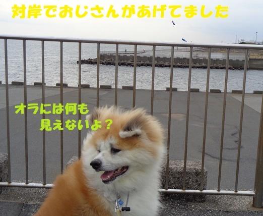 f0121712_01014372.jpg