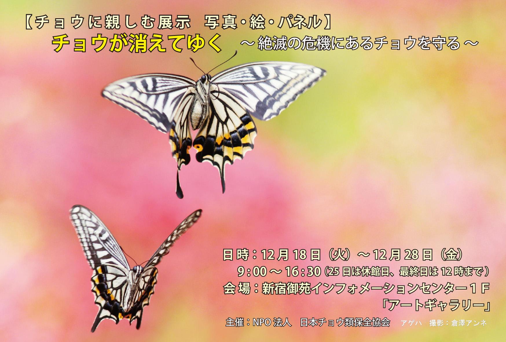 c0353632_16101165.jpg