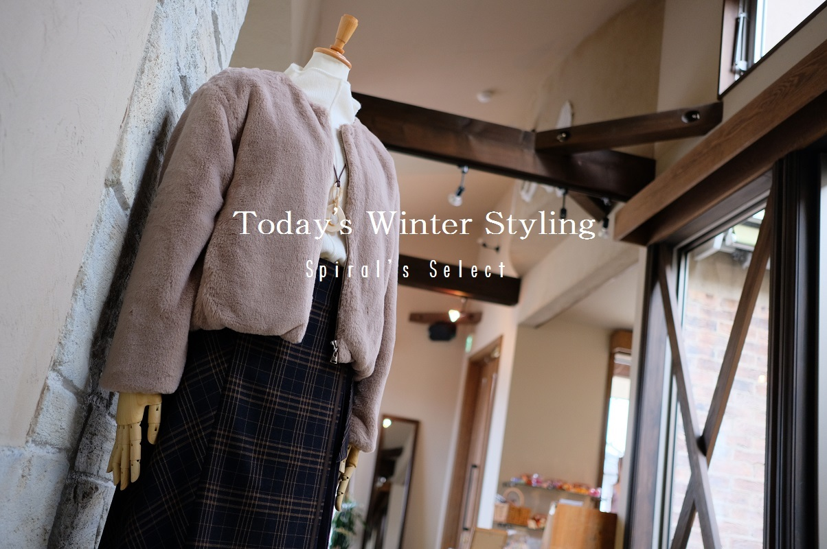 """Today\'s Winter Styling...12/9sun\""_d0153941_16261370.jpg"
