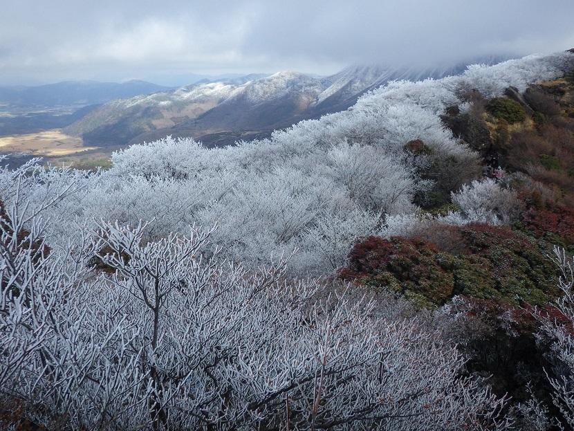 霧氷鑑賞・・久住山へ。_e0164643_11211481.jpg