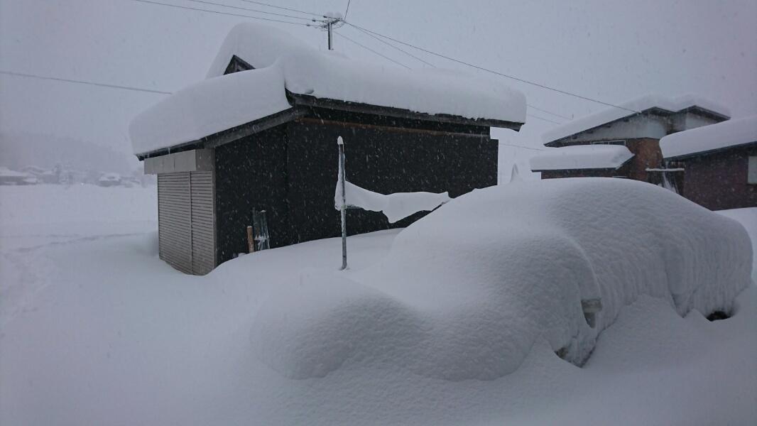 大雪だ!_f0081443_17024403.jpg