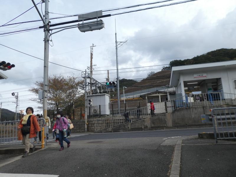きのくに子どもNPO「孝子の森でネイチャークラフト」_c0108460_20175656.jpg