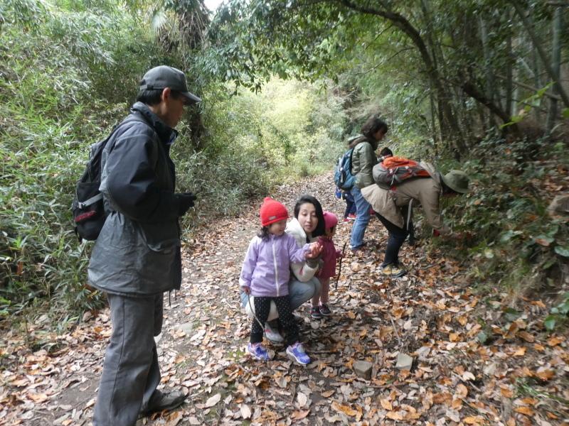 きのくに子どもNPO「孝子の森でネイチャークラフト」_c0108460_20213556.jpg