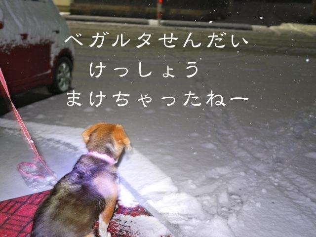 b0359692_20101027.jpg