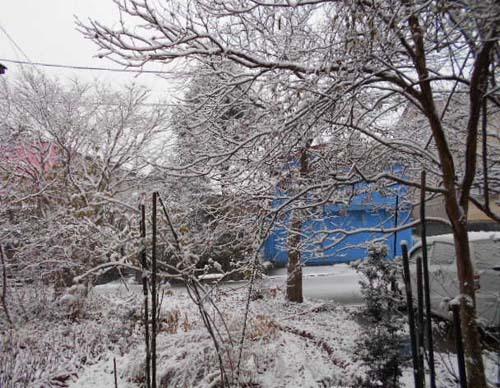 自家製焼き豚&雪が積もった_f0019498_15593037.jpg