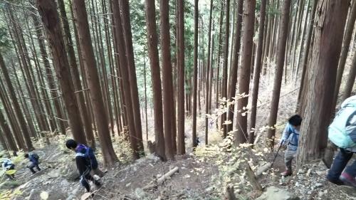 山登り④御岳山 再び_e0341099_06424804.jpg