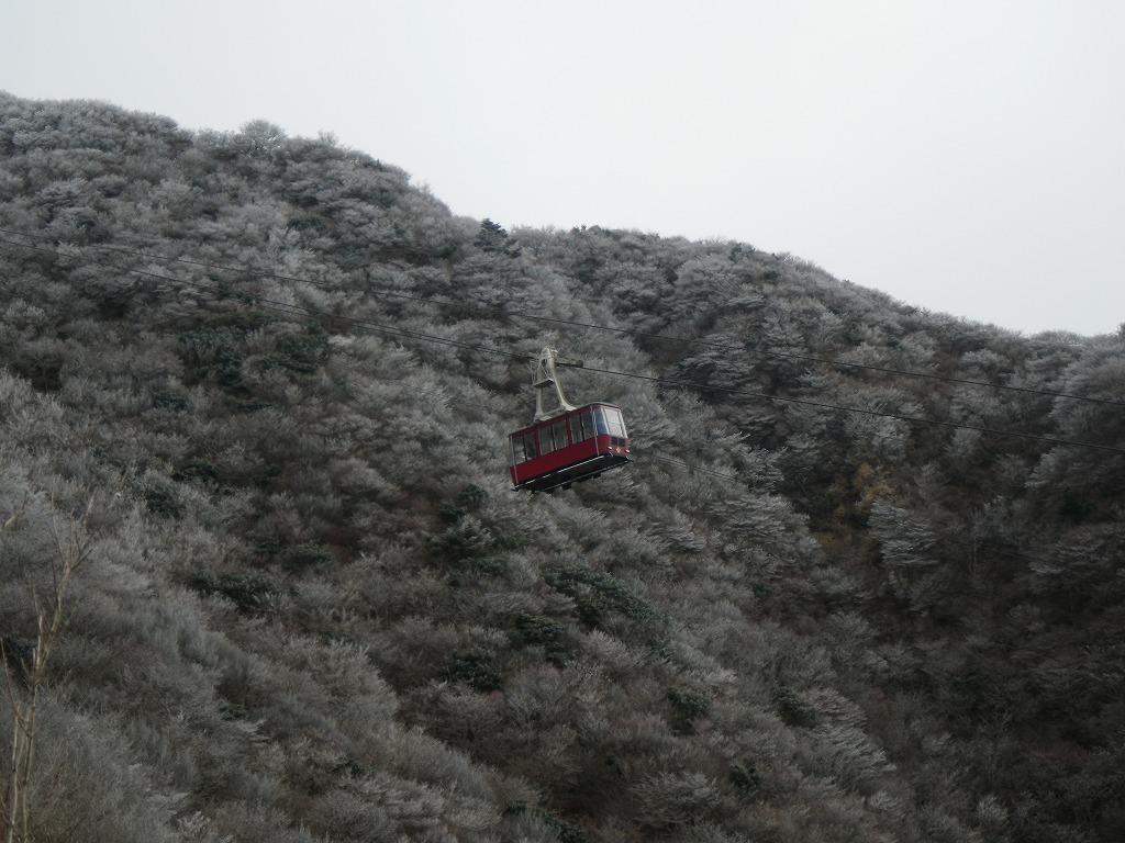 霧氷 & 出川 ・・・どないな組合せ(笑)_f0187402_20541865.jpg