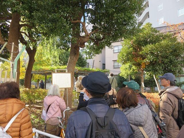 暖かな陽気のなか、代々木を散歩してきました。_c0187004_16495076.jpg