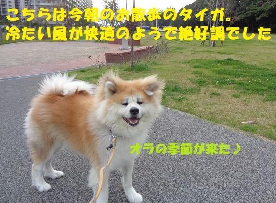 f0121712_14575002.jpg