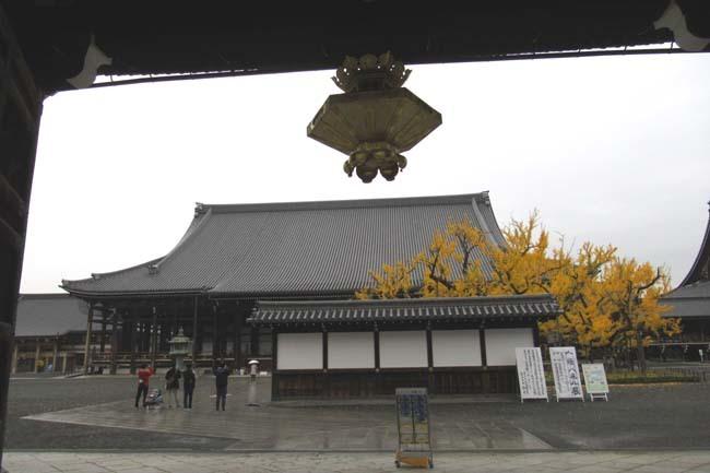 西本願寺 逆さイチョウ _e0048413_21012662.jpg