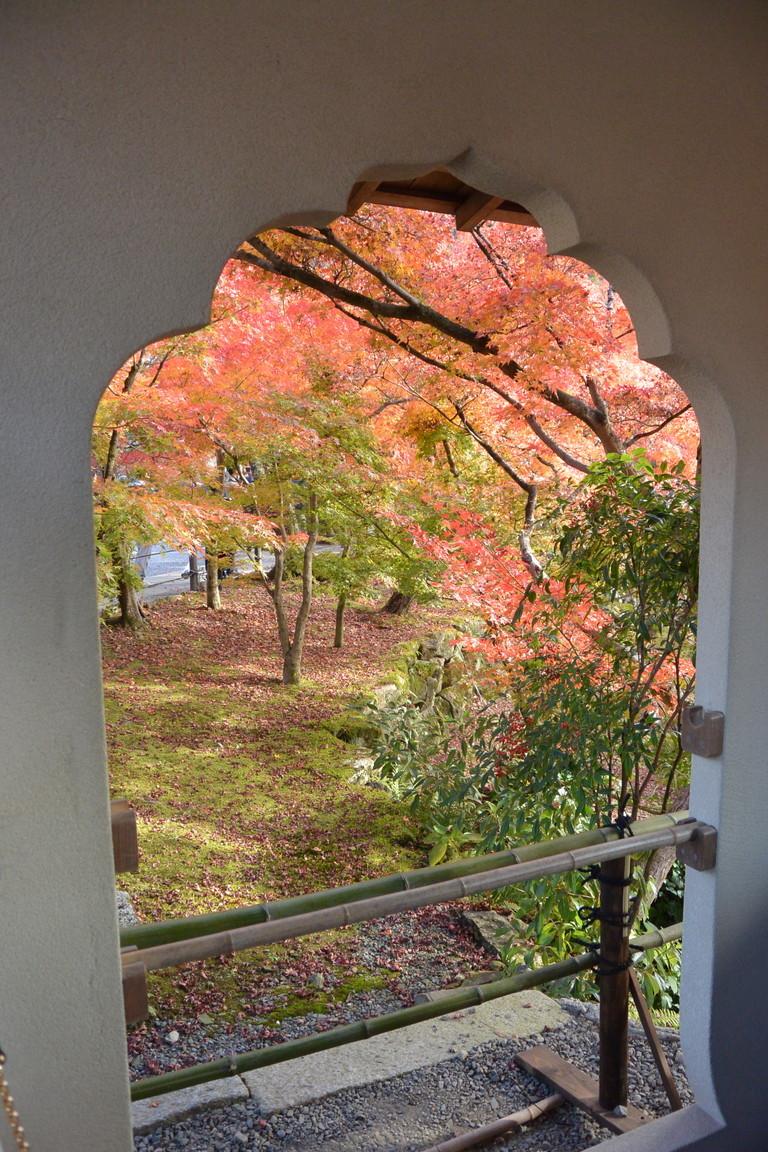 """2018年11月『京都の紅葉』 November 2018 \""""The Autumn of Kyoto\""""_c0219616_19495320.jpg"""