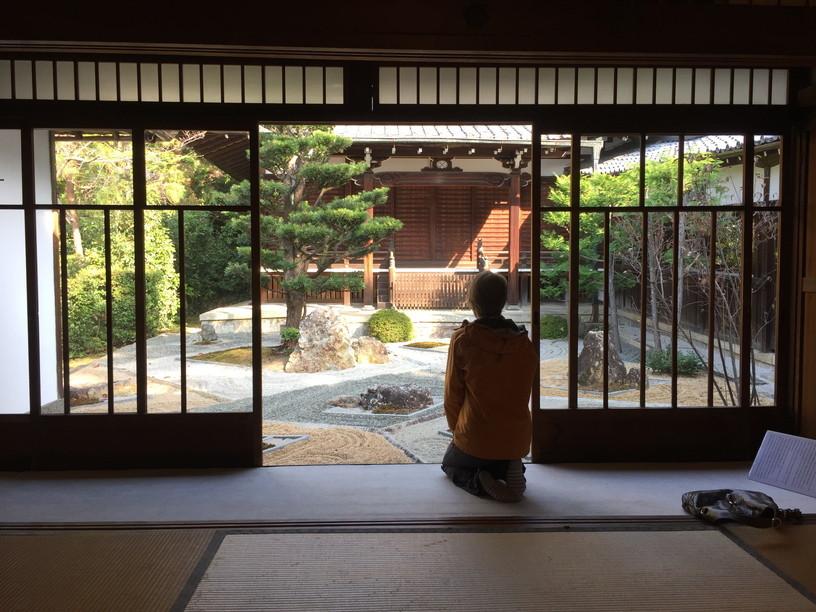 """2018年11月『京都の紅葉』 November 2018 \""""The Autumn of Kyoto\""""_c0219616_20122895.jpg"""
