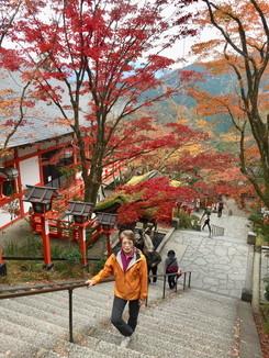 """2018年11月『京都の紅葉』 November 2018 \""""The Autumn of Kyoto\""""_c0219616_20143471.jpg"""