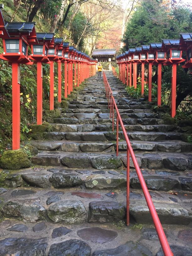 """2018年11月『京都の紅葉』 November 2018 \""""The Autumn of Kyoto\""""_c0219616_20145721.jpg"""
