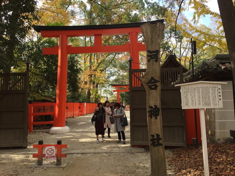 """2018年11月『京都の紅葉』 November 2018 \""""The Autumn of Kyoto\""""_c0219616_20154820.jpg"""