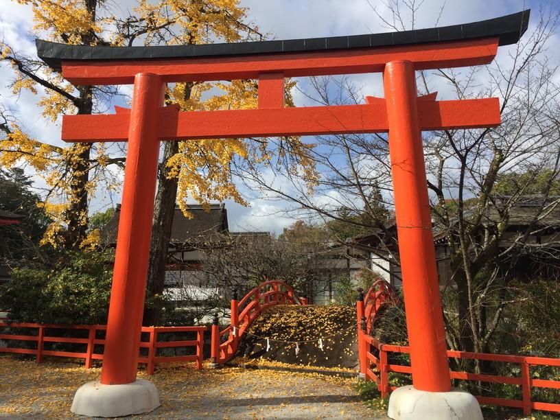 """2018年11月『京都の紅葉』 November 2018 \""""The Autumn of Kyoto\""""_c0219616_20154853.jpg"""