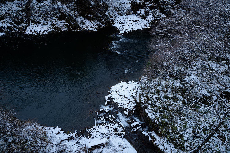 first snow fall 2018_a0041722_10464155.jpg