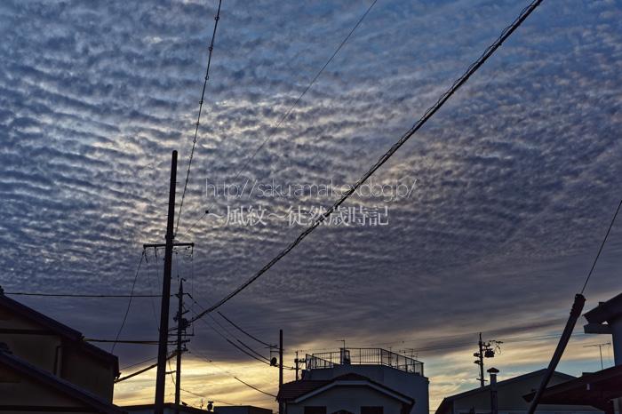 下り坂を告げる高積雲。_f0235723_21153328.jpg
