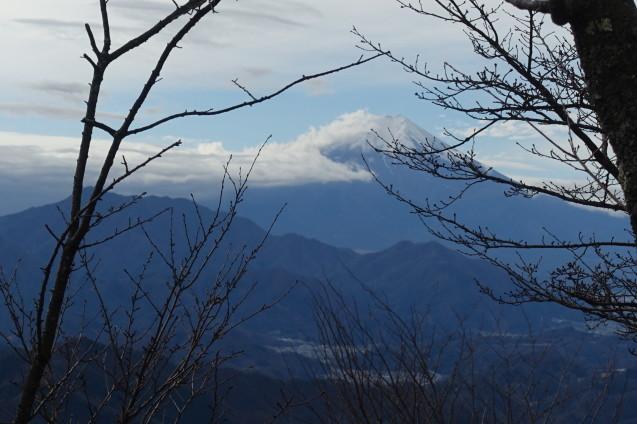 百蔵山1003mに登りました_e0232277_12051759.jpg