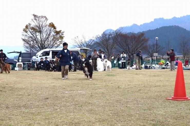 DEKAWAN FC 秋のミーティング♪ _b0135889_01171745.jpg