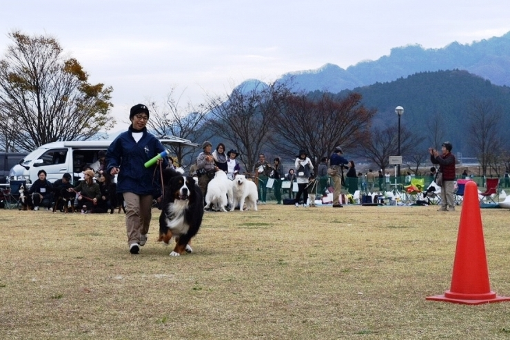 DEKAWAN FC 秋のミーティング♪ _b0135889_01214297.jpg