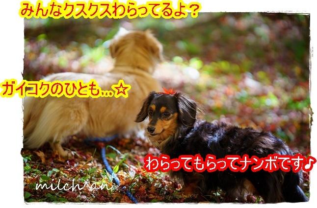 b0115642_09121332.jpg