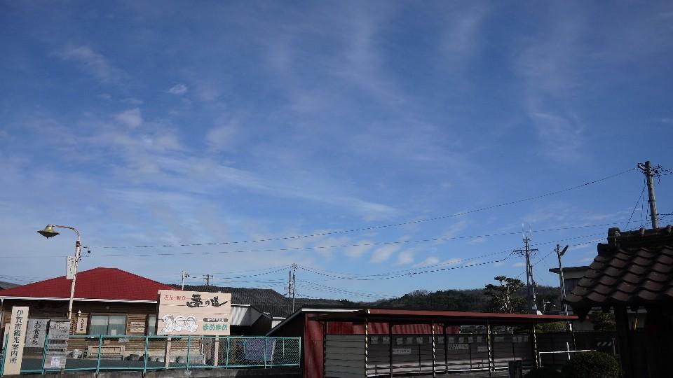 Today\'s terrace 12/11 ……………_c0220065_21030275.jpg