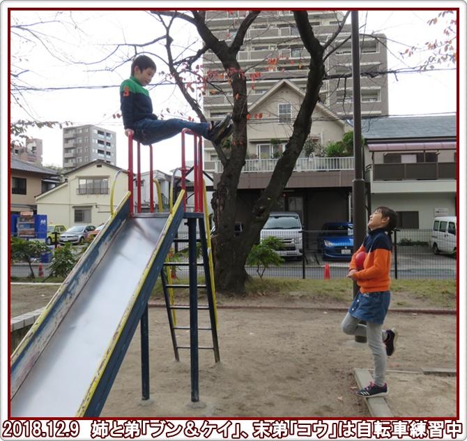 a0052666_2146484.jpg