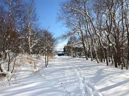 雪の中の岩見沢プロジェクト_c0189970_09540964.jpg