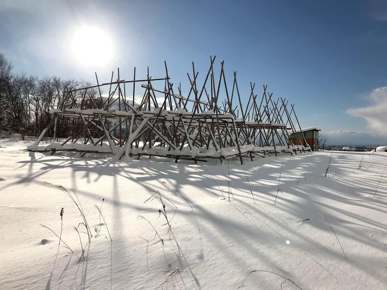 雪の中の岩見沢プロジェクト_c0189970_09592535.jpg