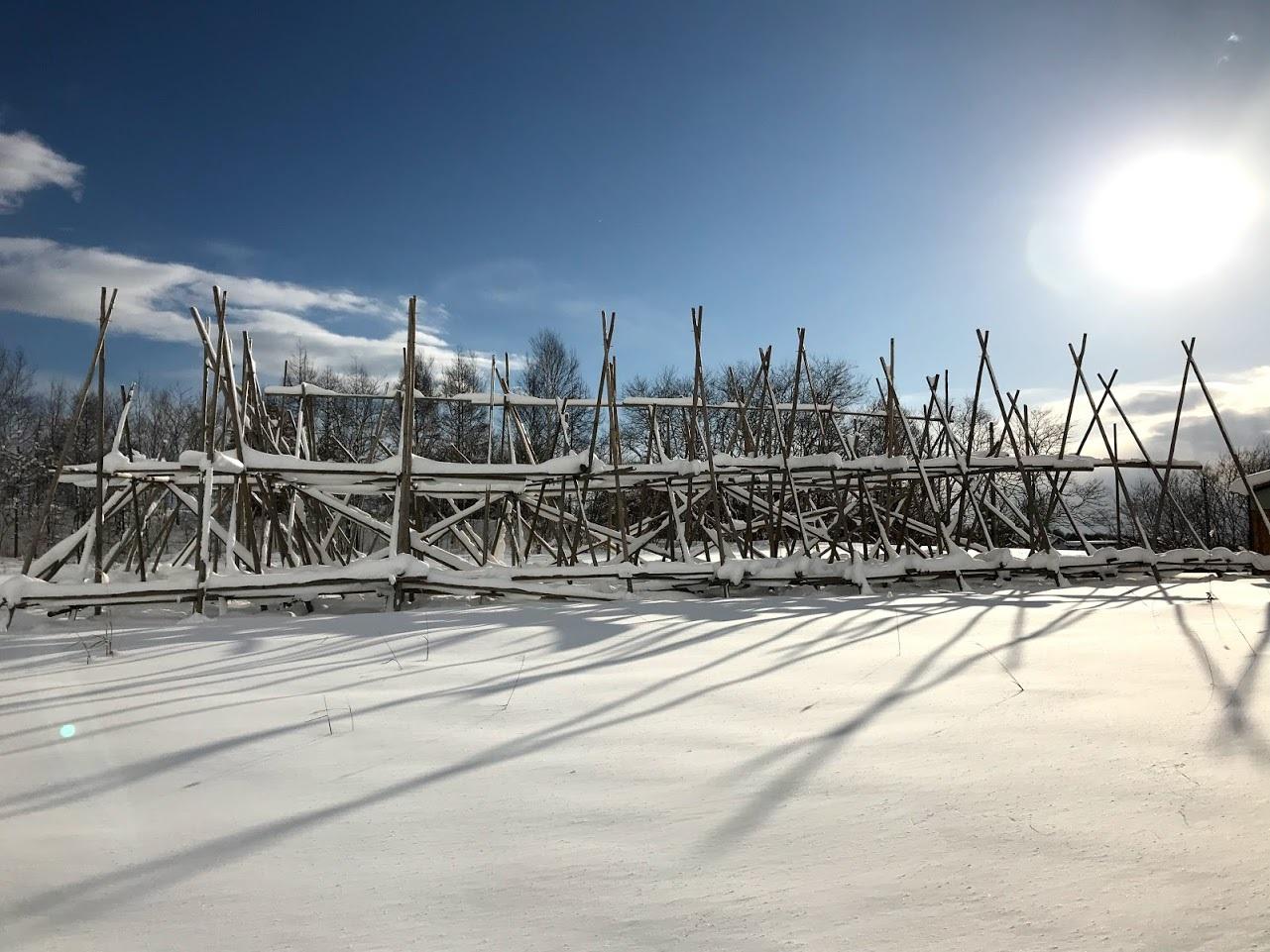 雪の中の岩見沢プロジェクト_c0189970_09594219.jpg