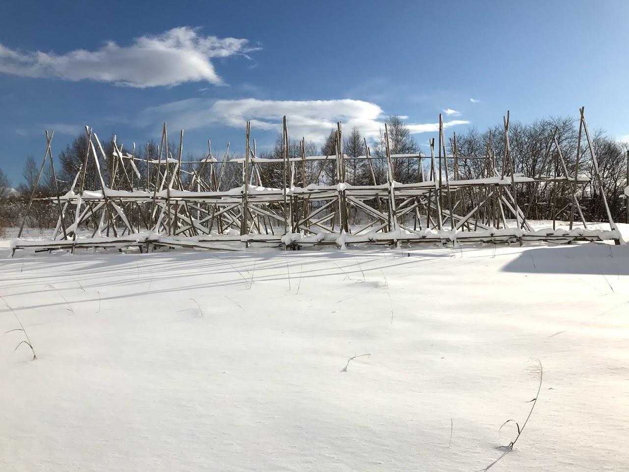 雪の中の岩見沢プロジェクト_c0189970_10080262.jpg