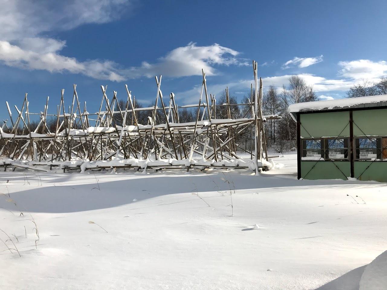 雪の中の岩見沢プロジェクト_c0189970_10104418.jpg