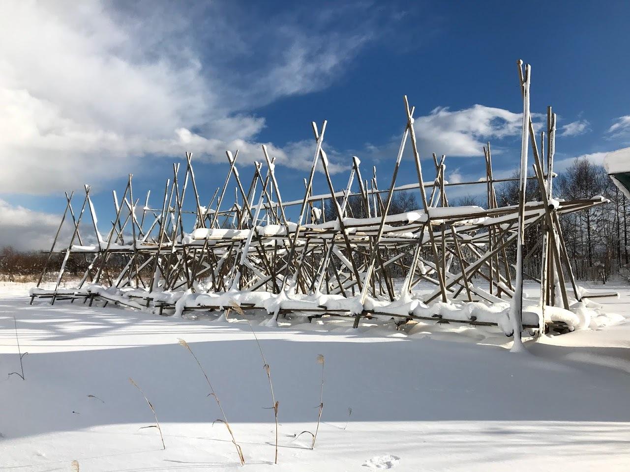 雪の中の岩見沢プロジェクト_c0189970_10114790.jpg