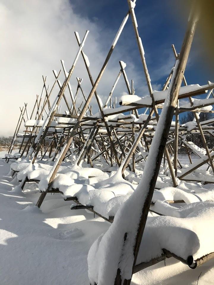 雪の中の岩見沢プロジェクト_c0189970_10115831.jpg
