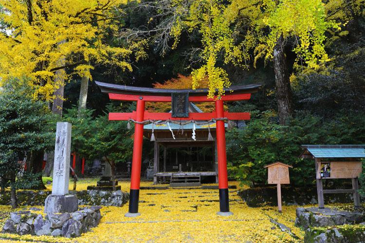 岩戸落葉神社_e0051888_05284137.jpg
