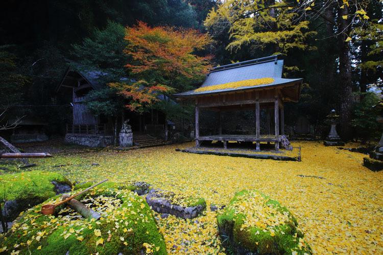 岩戸落葉神社_e0051888_05303236.jpg