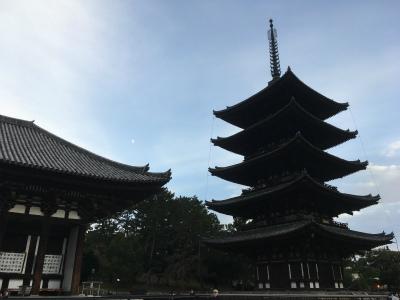 久しぶりの旅行 奈良編_f0220089_18030788.jpg