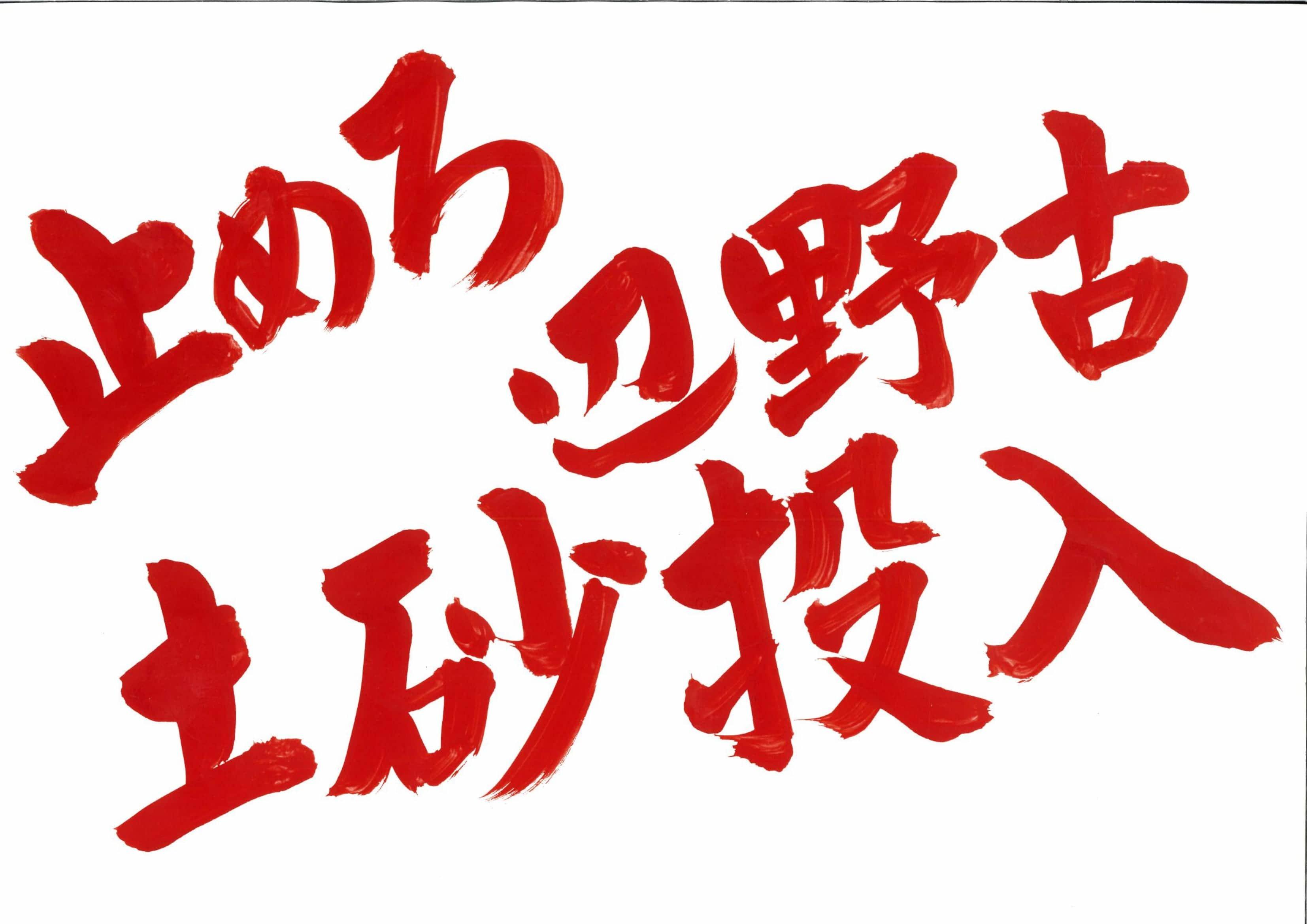 できない!つくらせない!辺野古新基地1・20新宿アクションにご参加を_d0391192_10294621.jpg