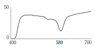 究極の偏光サングラスレンズ「KODAK PolarMaxPro」一眼度付きサングラス対応開始!_c0003493_18444797.jpg