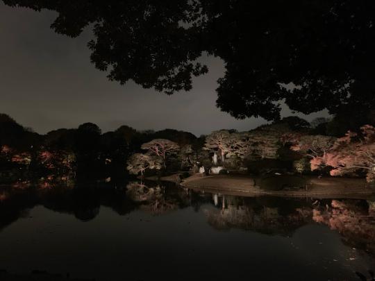 夜の駒込を徘徊する★_e0001906_18061235.jpg